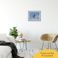 "Egret in Flight Animal / Wildlife Photograph Fine Art Canvas & Unframed Wall Art Prints 16"" x 20"" / Classic Paper - Unframed - PIPAFINEART"