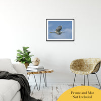 "Egret in Flight Animal / Wildlife Photograph Fine Art Canvas & Unframed Wall Art Prints 20"" x 30"" / Classic Paper - Unframed - PIPAFINEART"