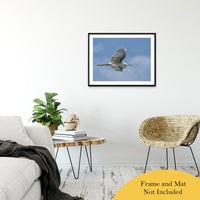 "Egret in Flight Animal / Wildlife Photograph Fine Art Canvas & Unframed Wall Art Prints 24"" x 36"" / Classic Paper - Unframed - PIPAFINEART"