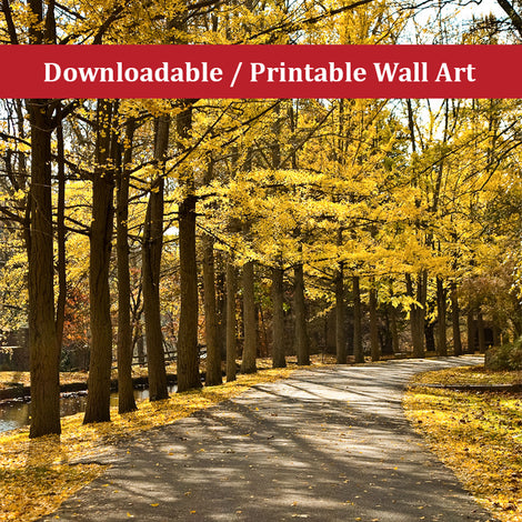 Fall Path Landscape Photo DIY Wall Decor Instant Download Print - Printable