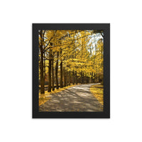 Fall Path Nature Landscape Framed Photo Paper Wall Art Prints - Rural / Farmhouse / Country Style Landscape Scene