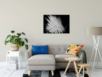 "Fern Leaf in the Sunlight Botanical / Nature Photo Fine Art Canvas Wall Art Prints 24"" x 36"" / Fine Art Canvas - PIPAFINEART"