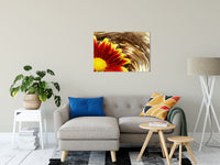 Floral Nature Photograph Floating Mum - Fine Art Canvas - Home Decor Unframed Wall Art Prints