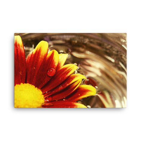 Floating Mum Floral Nature Canvas Wall Art Prints