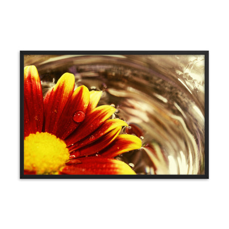 Floating Mum Floral Nature Photo Framed Wall Art Print