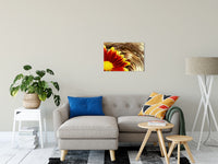 "Floating Mum Nature / Floral Photo Fine Art Canvas Wall Art Prints 20"" x 24"" / Fine Art Canvas - PIPAFINEART"