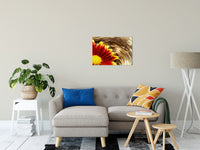 "Floating Mum Nature / Floral Photo Fine Art Canvas Wall Art Prints 20"" x 30"" / Fine Art Canvas - PIPAFINEART"