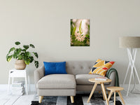 "Floral Tranquility Nature / Floral Photo Fine Art Canvas Wall Art Prints 20"" x 24"" / Fine Art Canvas - PIPAFINEART"