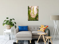 "Floral Tranquility Nature / Floral Photo Fine Art Canvas Wall Art Prints 24"" x 36"" / Fine Art Canvas - PIPAFINEART"