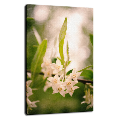 Floral Tranquility Nature / Floral Photo Fine Art Canvas Wall Art Prints