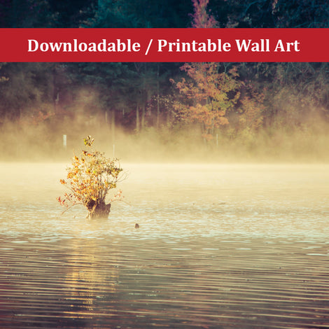 Golden Mist on Waples Pond Landscape Photo DIY Wall Decor Instant Download Print - Printable