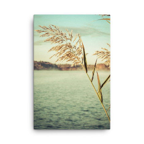 Golden Dreams Botanical Nature Canvas Wall Art Prints