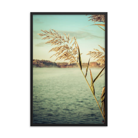 Golden Dreams Botanical Nature Photo Framed Wall Art Print