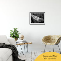 "Gull King Animal / Wildlife Black and White Photograph Fine Art Canvas & Unframed Wall Art Prints 20"" x 24"" / Classic Paper - Unframed - PIPAFINEART"