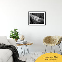 "Gull King Animal / Wildlife Black and White Photograph Fine Art Canvas & Unframed Wall Art Prints 20"" x 30"" / Classic Paper - Unframed - PIPAFINEART"