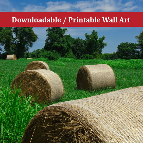 Hay Whatcha Doin' in the Field Landscape Photo DIY Wall Decor Instant Download Print - Printable
