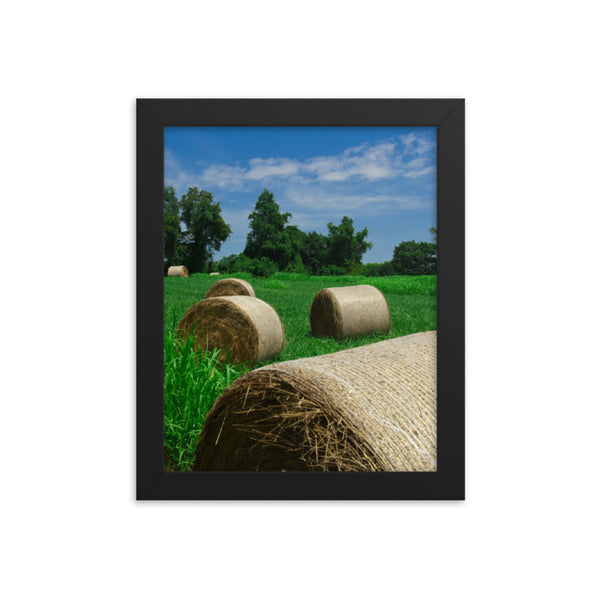 Hay Whatcha Doin in the Field Landscape Framed Photo Paper Wall Art Prints Rural / Farmhouse / Country Style Landscape Scene