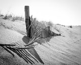 High Key Dunes Coastal Landscape Photograph Fine Art & Unframed Wall Art - PIPAFINEART