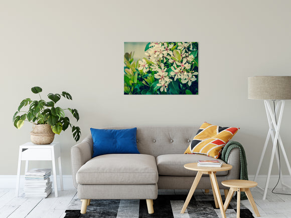 Floral Nature Photograph Indian Hawthorn Shrub in Bloom Colorized - Fine Art Canvas - Home Decor Unframed Wall Art Prints