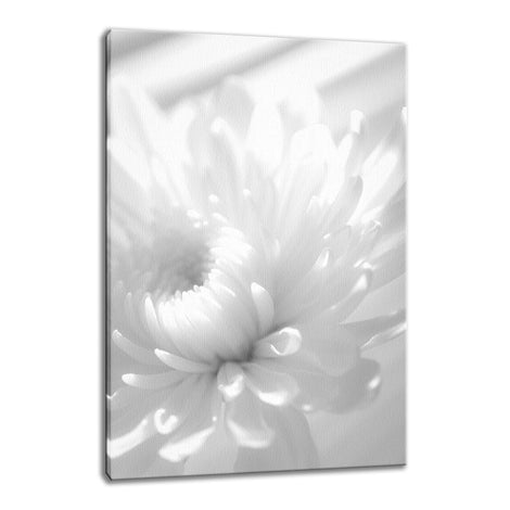Infrared Flower Nature / Floral Photo Fine Art Canvas Wall Art Prints