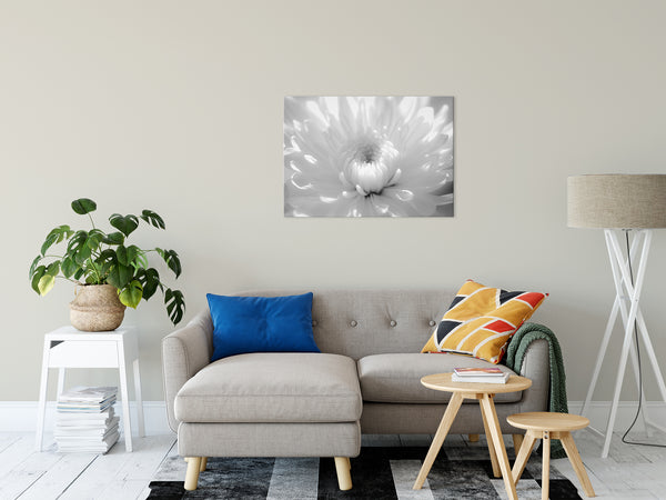 Floral Nature Photograph Infrared Flower 2 - Fine Art Canvas - Home Decor Unframed Wall Art Prints - PIPAFINEART