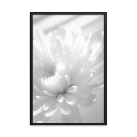 Infrared Flower 2 Black and White Floral Nature Photo Framed Wall Art Print