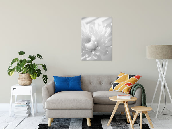 Floral Nature Photograph Infrared Flower - Fine Art Canvas Prints- Home Decor Unframed Wall Art Prints - PIPAFINEART