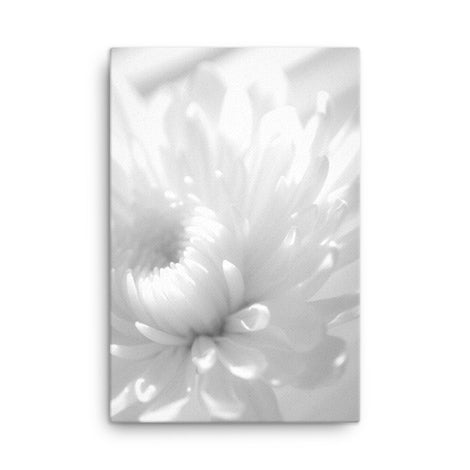 Infrared Flower Black and White Floral Nature Canvas Wall Art Prints