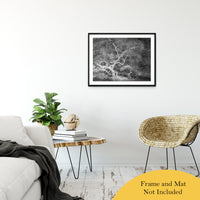 "Infrared Japanese Maple Abstract Photo Fine Art Canvas & Unframed Wall Art Prints 24"" x 36"" / Classic Paper - Unframed - PIPAFINEART"