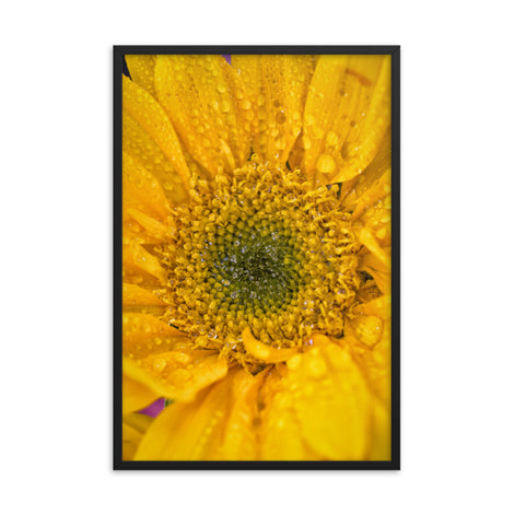 Joyful Color Floral Nature Photo Framed Wall Art Print