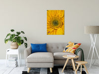 Joyful Color Nature / Floral Photo Fine Art & Unframed Wall Art Prints - PIPAFINEART