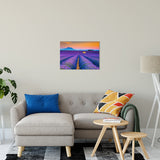 Blooming Lavender Field and Sunset Floral Landscape Wall Art & Canvas Prints - PIPAFINEART