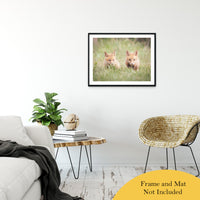 "Learning to Hunt - Red Fox Pups Animal / Wildlife Photograph Fine Art Canvas & Unframed Wall Art Prints 24"" x 36"" / Classic Paper - Unframed - PIPAFINEART"