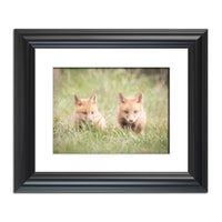 Learning to Hunt - Red Fox Pups Animal / Wildlife Photograph Fine Art Canvas & Unframed Wall Art Prints  - PIPAFINEART