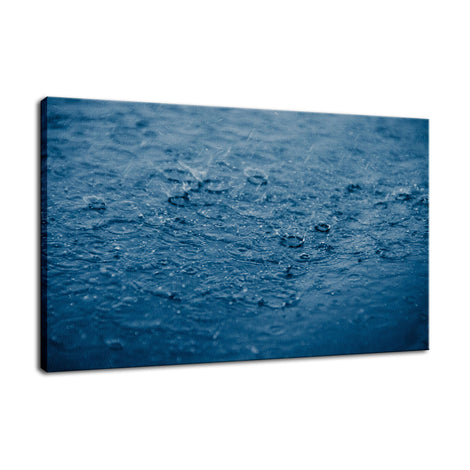 Let It Rain Nature Photo Fine Art Canvas Wall Art Prints
