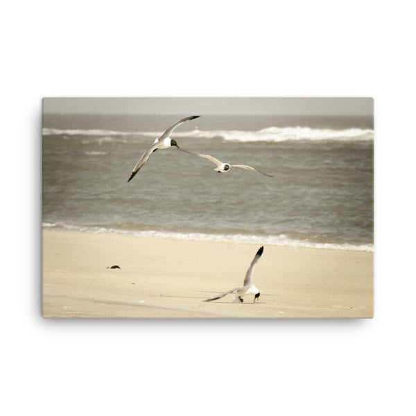 Life at the Shore Coastal Landscape Canvas Wall Art Prints  - PIPAFINEART