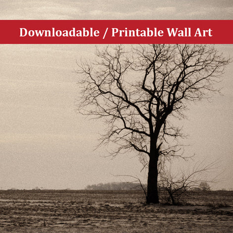 Lonely Tree Landscape Photo DIY Wall Decor Instant Download Print - Printable