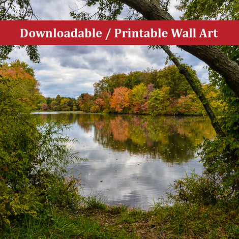 Lost in Autumn Color Landscape Photo DIY Wall Decor Instant Download Print - Printable
