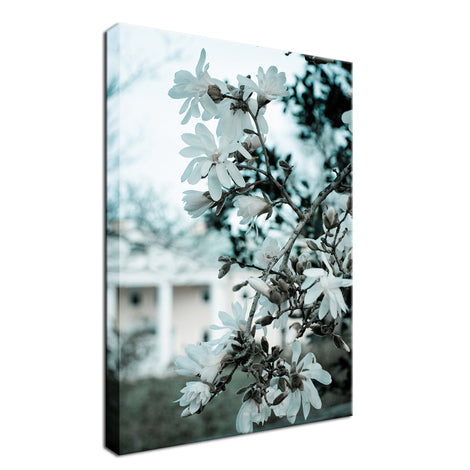Mansion Bloom Colorized Nature Landscape Fine Art Canvas Wall Art Prints