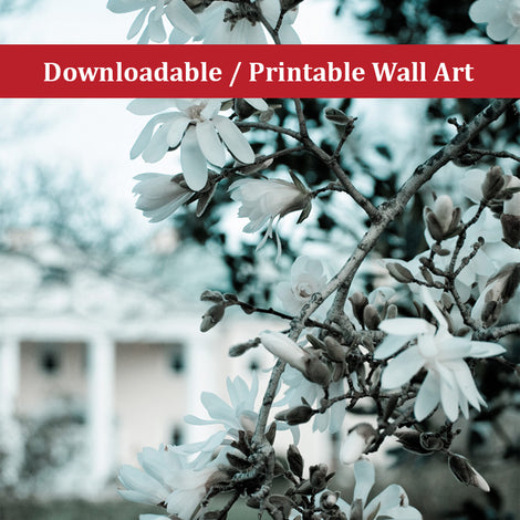 Mansion Blooms Landscape Photo DIY Wall Decor Instant Download Print - Printable