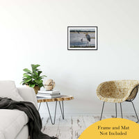 Marsh Centennial Animal / Wildlife Photograph Fine Art Canvas & Unframed Wall Art Prints - PIPAFINEART