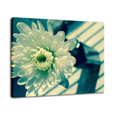 Melancholy Flower Nature / Floral Photo Fine Art Canvas Wall Art Prints
