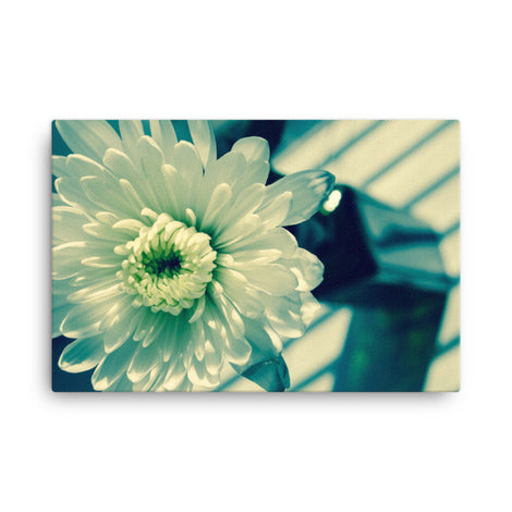 Melancholy Flower Floral Nature Canvas Wall Art Prints