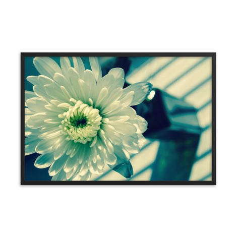 Melancholy Flower Floral Nature Photo Framed Wall Art Print