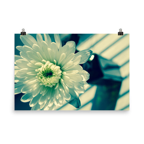 Melancholy Flower Floral Nature Photo Loose Unframed Wall Art Prints