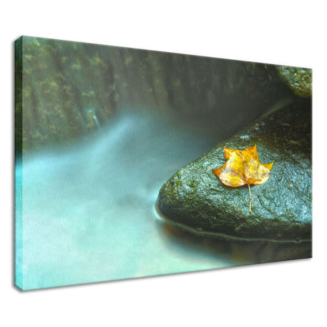 Misty Leaf Nature / Botanical Photo Fine Art Canvas Wall Art Prints