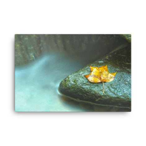 Misty Leaf Botanical Nature Canvas Wall Art Prints