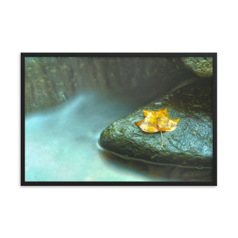 Misty Leaf Botanical Nature Photo Framed Wall Art Print