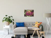 Moody Young-And-Old Age Pink Zinnia Flower Bloom Wall Art Prints & Fine Art Canvas Prints - PIPAFINEART
