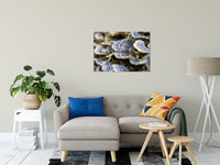 "Mushrooms on Log Botanical / Nature Photo Fine Art Canvas Wall Art Prints 24"" x 36"" / Fine Art Canvas - PIPAFINEART"